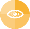 ico_audit